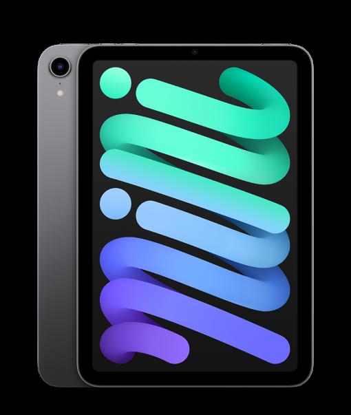 ipad mini select wifi space gray 202109